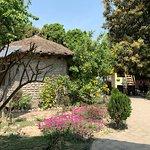 Bardia Homestay照片