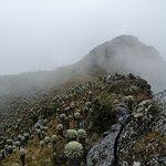 Mongui Travels Photo