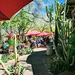 Zdjęcie Grotto Cafe