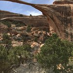 Collapsed portion of Landscape Arch