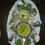 Five Oysters의 사진