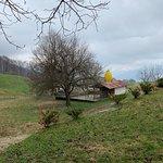 recinto galline