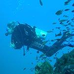 great diving at Chumphon pinnacle