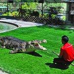 Educational talk here at Crocodile Adventureland Langkawi.