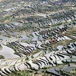 Rice Terraces of Yuanyang
