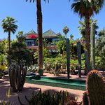 Majorelle Garden with Museum of Yves St Laurant