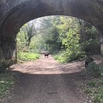 Walk to Wickham down the old disused BlueBell Railway
