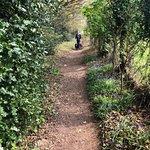 Path leading to campsite