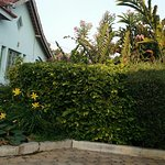 Gubachi Gudu home stay Awesome place