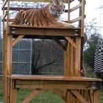 Elmira's Wildlife Sanctuary