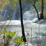 Rwący potok na wyciągnięcie reki