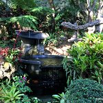 relaxing sounds of fountains