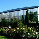 Blick auf die Pflanzenwelt unter Glas
