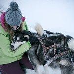 Activité Cani-Rando et Traineau à chien