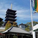 本堂前の鯉幟、後方の建物は護摩堂と五重塔です
