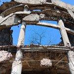 Торжество жизни: внутри растут молодые деревья