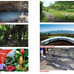 Full day tour 8 hours: the grottos, the look out of taravao, the eels feeding…..