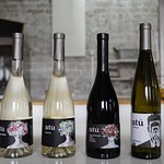 ATU Winery