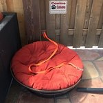 Canine cabana - for very well-behaved dogs :)