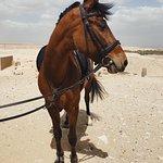Abu Sir ride