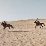 Gallops in Hurghada