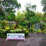 鹿児島県薩摩半島の最南端付近にある花の素敵な植物園です。春から秋が一番の見頃ですが年間通してもお花が見れる場所です。