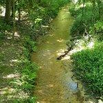 Butler Mill Ruins Trail