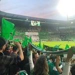 Weser Stadion (Weser Stadium) – fénykép