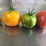 Tomate de notre jardin