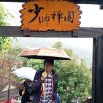Фотография Marshal Zen Garden