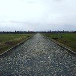 Auschwitz II Birkenau. BIIb sector.