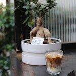 Foto di Honor Cafe