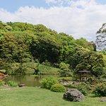190502Higo-hosoka wagarden fresh green