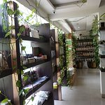 Organics Store