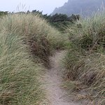 The pass through the dunes