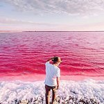Shiraz not only has pink mosque but also has seasonal pink lake as well😉