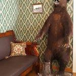 чучело медведя в кабинете