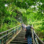 Hiking up Elephant Mountain