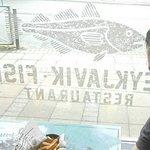 Reykjavik – Fish