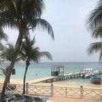 Foto de La Palapa Beach Bar