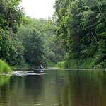 Canoeing and Walking in Soomaa National Park