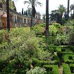 裏手の大きな庭園
