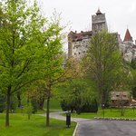 A view of Bran Castle