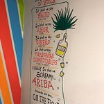 Yucca Image