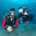 Padi 5 start dive center located beach front at Nusa penida