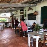 Villa Enli Agriristoro照片