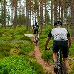 Cycling Jonkoping