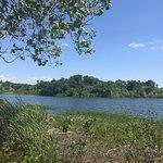Foto de Veteran's Lake