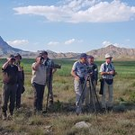 Birdwatching in Nakhchivan Autonomous Republic/Azerbaijan.
