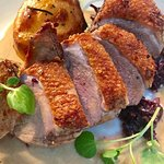 Duck special with madiera sauce